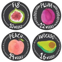 fruit_web2_medium